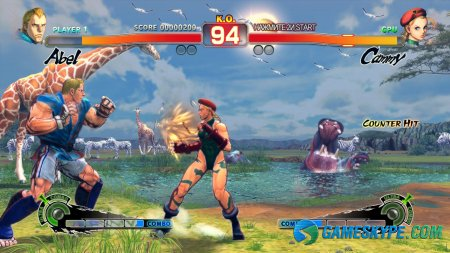 Super Street Fighter 4: Arcade Edition (2011/RUS)