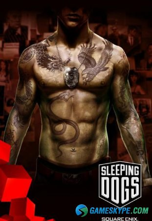 Sleeping Dogs - Limited Edition (2012/Rus/Eng)